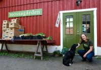 KDmossagården_14357
